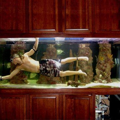 Intretinerea acvariului