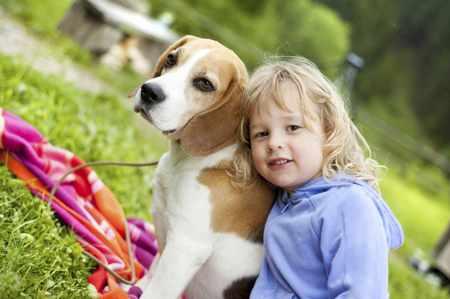 caine beagle cu copil blond