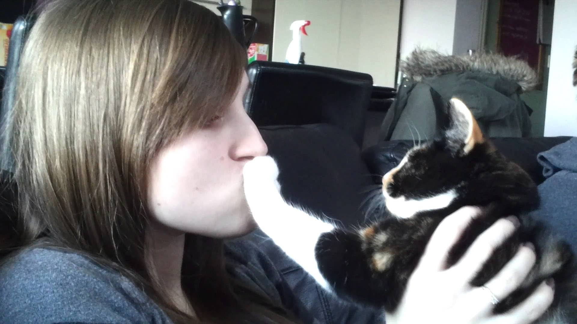 De ce pisicile nu vor sa fie pupate?
