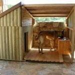 cusca de caine cu acoperis