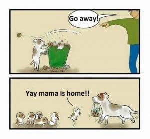 mama caine acasa