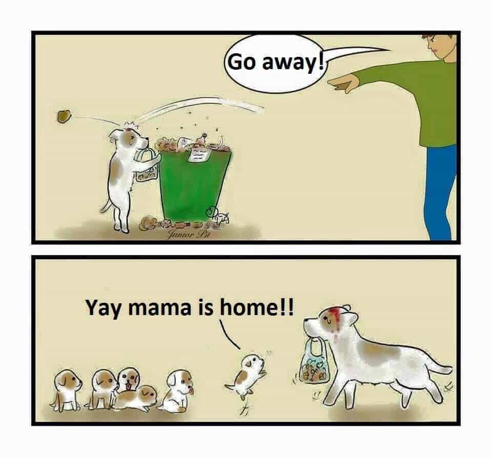 A venit mama acasa