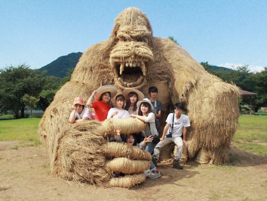Animalele de paie imense invadează câmpurile japoneze după recoltarea orezului