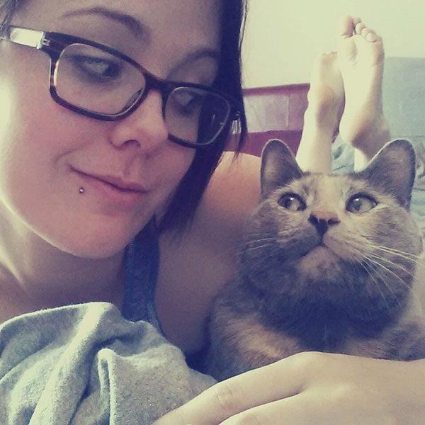 Cum sa te imprietenesti cu o pisica