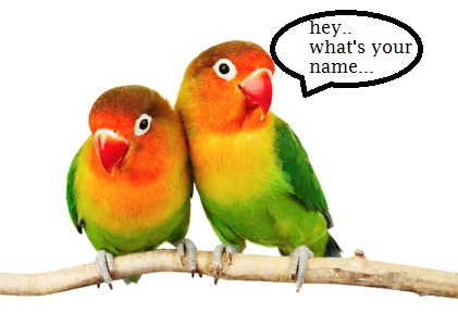 Nume de papagali