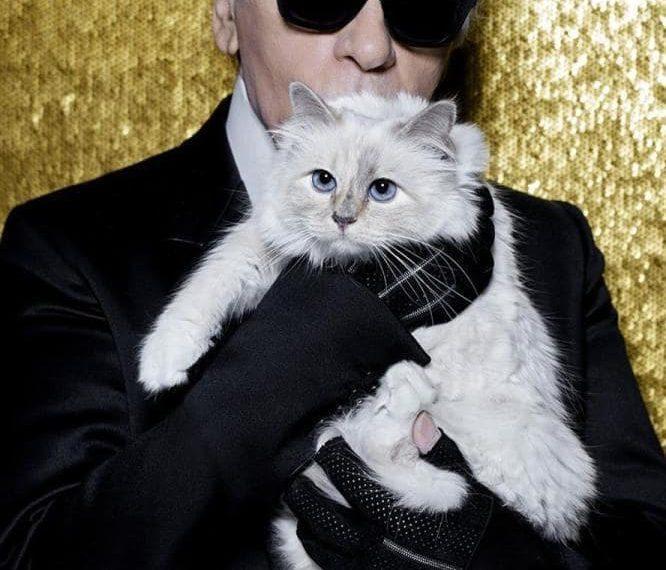 Pisica lui Karl Lagerfeld, cel mai bogat animal din lume